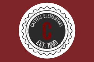 CattellNewsPlaceholder